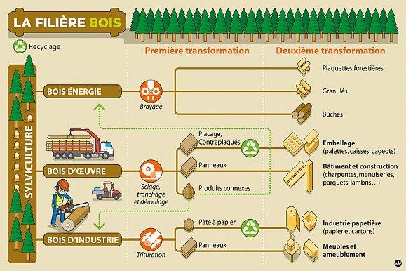 Eco-certification-chaine-logistique-bois_Qualitae_Labels-Construction_Christophe_Chabbi
